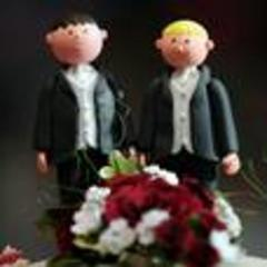 Deal rescues gay marriage bill