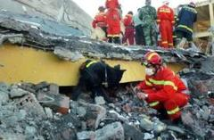 Blast at China's explosives plant  kill 13, 20 missing