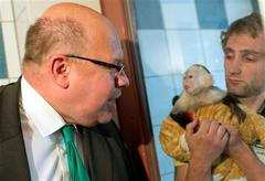 Bieber's Monkey Taken by German Authorities